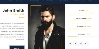 20+ Best Free & Premium  CV, Vcard Resume WordPress Themes