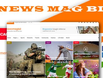 ewsMagbd magazine, blog and content publishers WordPress Theme ( free version )