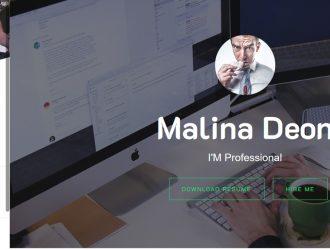 Online CV Resume WordPress theme