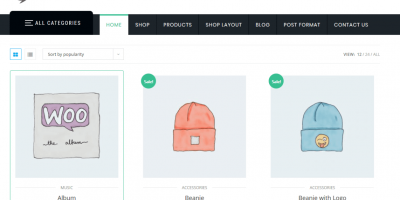 Introduce  Another Bestselling and Downloading WordPress Ecommerce Theme – ShopStore