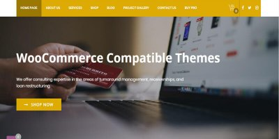17+ Best eCommerce WordPress themes minimalist by WordPress company