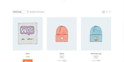 How to Pick Right  WordPress Theme for your Next WordPress Store