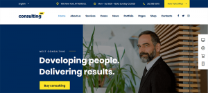 20 Codeless wordpress themes for business or Agency owner