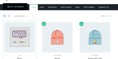Boost your sales with ShopStore WordPress theme