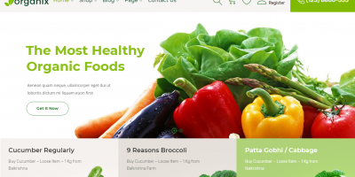 25 Amazing WordPress eCommerce themes for your next online grocery store